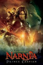Download Film The Chronicles of Narnia: Prince Caspian (2008) Sub Indo