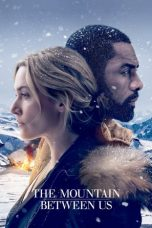 Download Film The Mountain Between Us 2017 Subtitle Indonesia