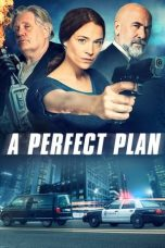 Download A Perfect Plan (2020) Sub Indo
